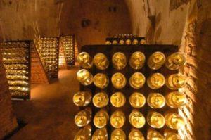 Champagne Bottles in Cellar