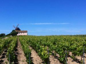 Champagne Tour in France 3