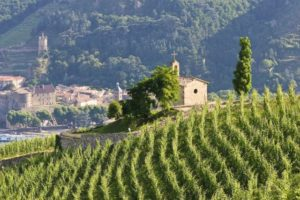 The Rhone Valley- Credits LPASCALE