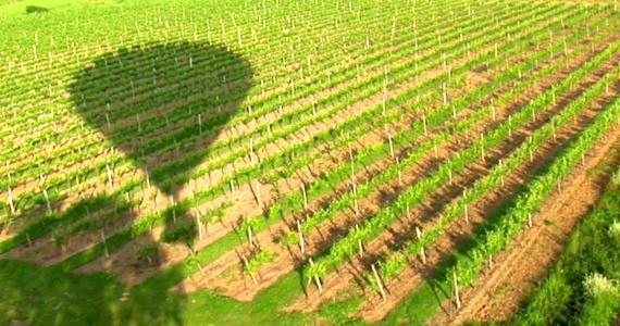 Saint-Emilion Wine Tour - Credit CDT Gironde TV Tourism