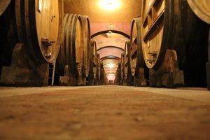 Cellar Fontanafredda