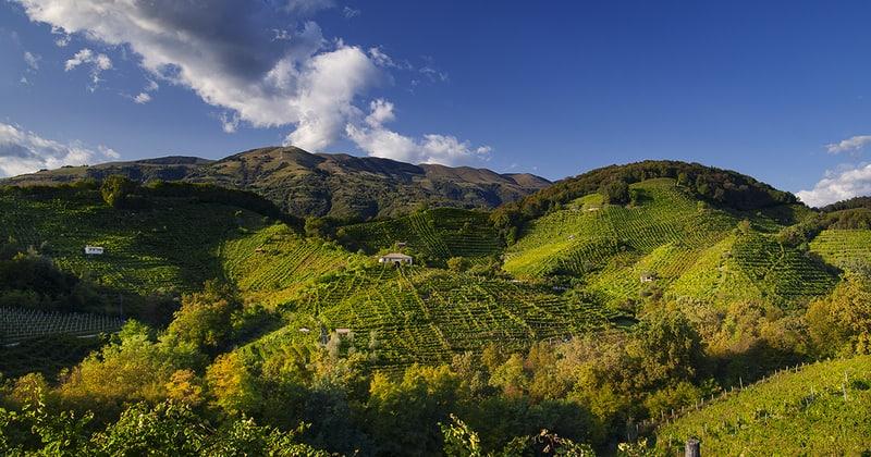 Prosecco Wine Tour - Credits Locanda la Candola