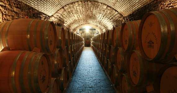 Prosecco Wine Tour- Credits Villa Sandi