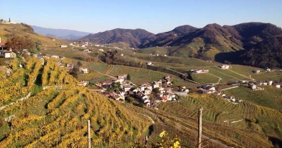 Prosecco Wine Tour