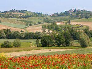 via_francigena_verso_il_mare_collina(1)- Credits Turismo Torino