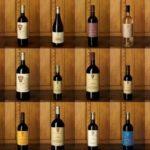 Barolo wine tour - Marchesi di Gresy