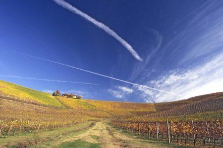 Piedmont Wine Tour - Credits Fontanafredda Gallaretto