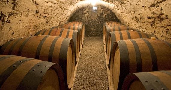 Avignon Wine Tour - Cave L.Pascale ADT 26