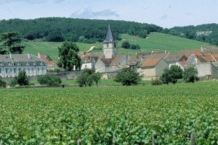 Wine Tour in Burgundy - Vosne Romanee
