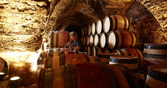 Wine tour in Burgundy - Credits- Beaune Tourisme © J. Piffaut