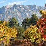 Château Henri-Bonnaud - photo Christophe Duranti - Provence Wine Tour