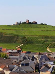 Vineyard Tours Champagne Weekendsa- Credits OTAR Carmen Moya