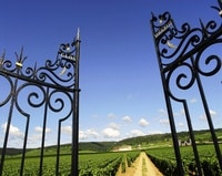 Beaune Wine Tours- Photo Alain Doire-bourgogne Tourisme