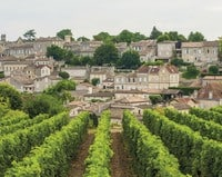 Bordeaux Wine Tour- Credits Vincent Bengold