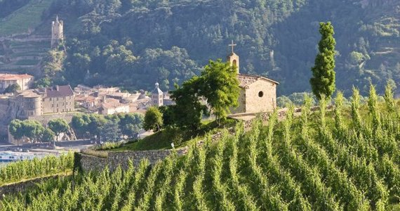 Wine Tour Booking - Credits Tain L'Hermitage L Pascale