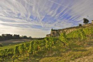 Wine vacantions Bordeaux - Credits Heurisko