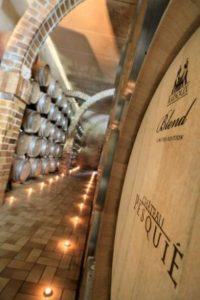 provence-wine-tour-5
