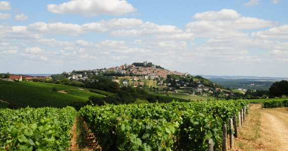Wine vacations credits Patrice Regnier