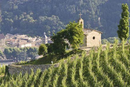 Rhone valley tour - TAINL'HERMITAGE5_LPASCALE