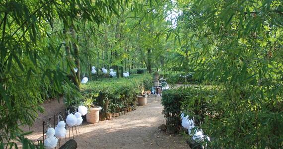 Luxury wine tours - Credits Chateau Saint Martin garden
