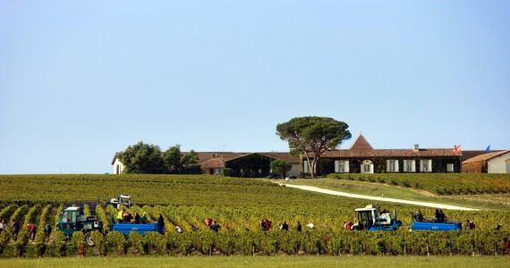 Luxury wine tours - Credits Deepix