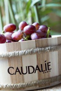 Wine and spa_grapes_2011_mcellard
