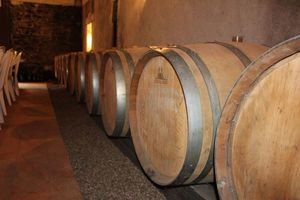 Loire Valley wine tours angers-barrels