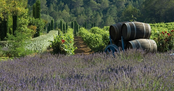 Provence - Credits Chateau de Berne
