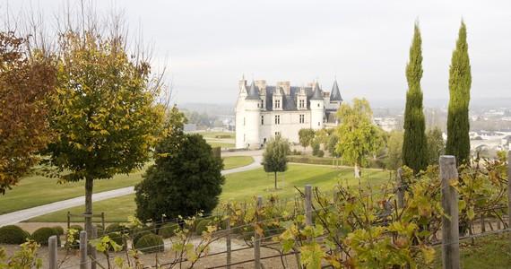 Loire Wine Tour - Credits Stevens Fremont ADT Touraine