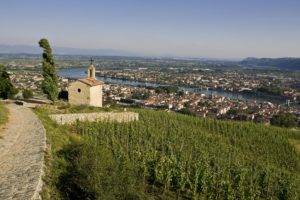TAINL'HERMITAGE4_L. PASCALE ADT26