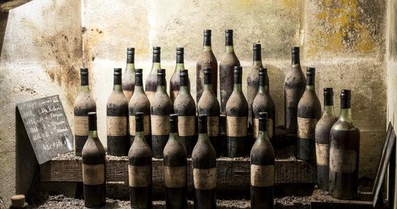 Cognac tour - Paradis Cellar 2