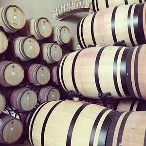 Bandol wine tour - customer 1 Provence
