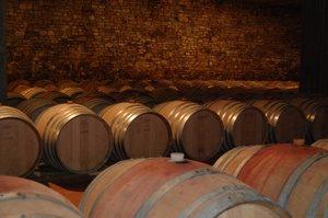 BARRICAIA3 Cellar Piedmont