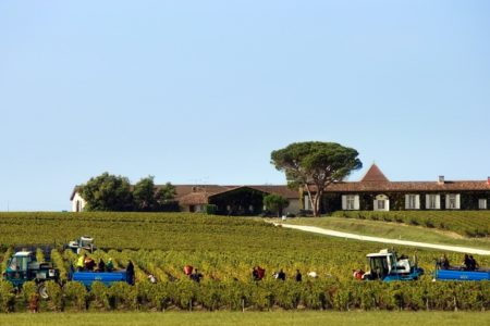 G001 © Deepix - Extensive Bordeaux winery tour