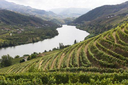 douro_3 Credits Douro Wine Tourism