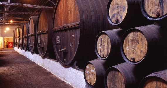 portwinelodge Credits Douro Wine Tourism