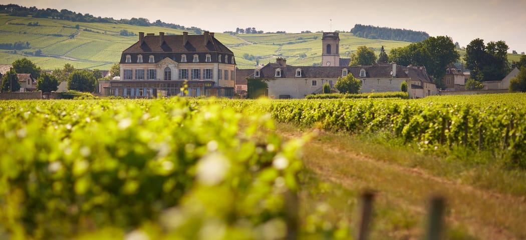 Le Château de Pommard - Beaune Tourisme © Château de Pommard