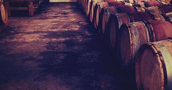 Rhône Valley Wine Tour