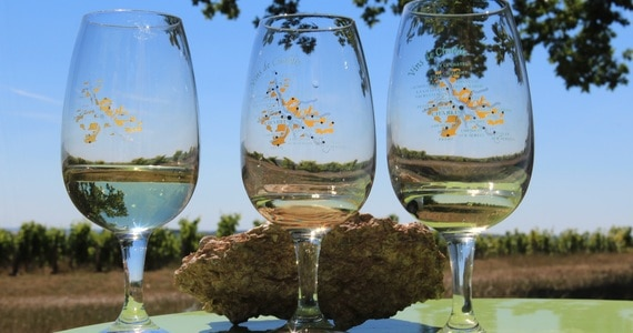 Wine Holiday- Credits Vititours