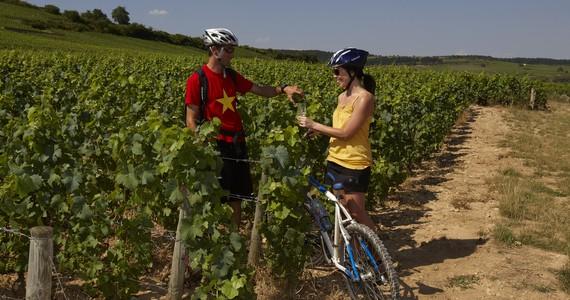 à vélo en Côte de Beaune - Beaune Tourisme © studio piffaut