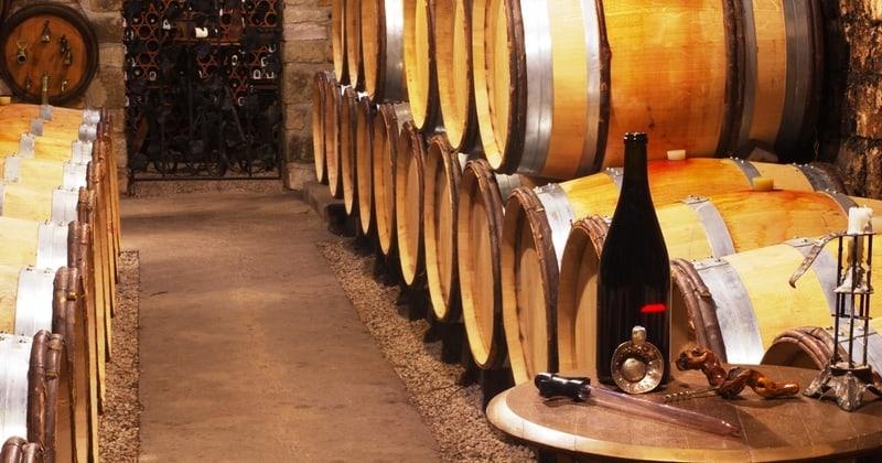 Burgundy wine tours