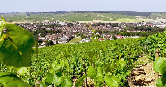 Chablis_Photo Alain Doire Bourgogne Tourisme