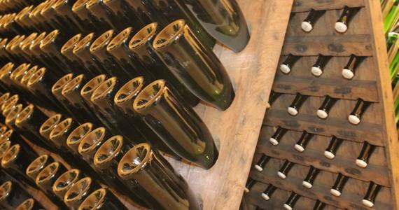 Champagne tasting in Epernay - Penet Chardonnet 13 (1)