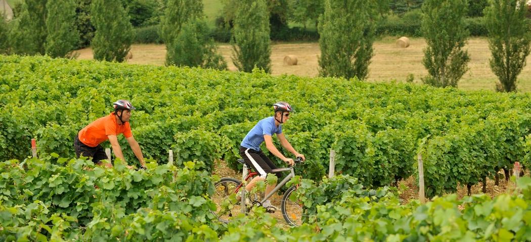Cycling- Credits- JDamase and CRT CentreValdeLoire
