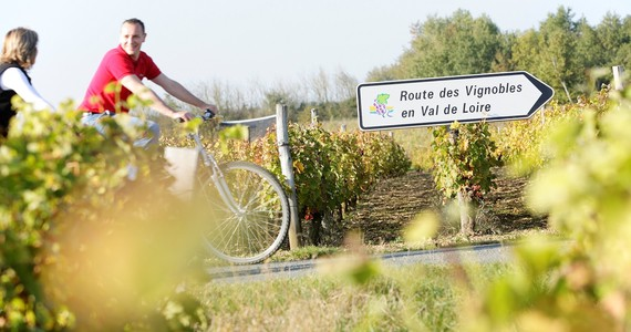 Cycling in the Loire Vineyards- Credits Stevens Fremont