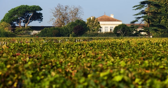 Bordeaux winery tour - credits Chateau Lynch-Bages