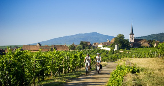 Wine Tasting in Alsace - Credits Infra and ADT Alsace